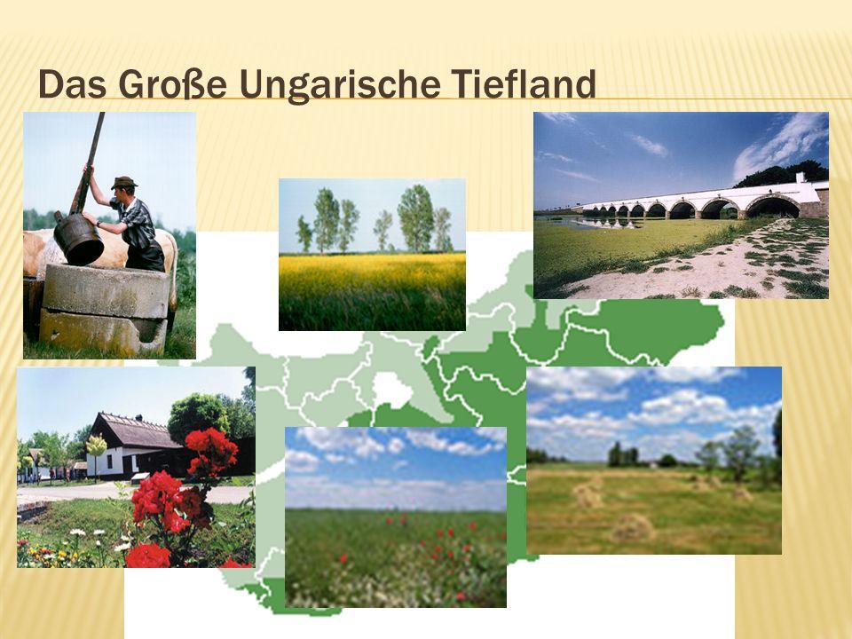 Das Große Ungarische Tiefland