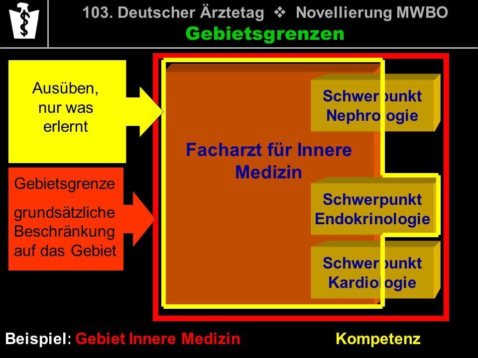 Gebietsgrenzen Beispiel: Gebiet Innere Medizin Facharzt für Innere Medizin Schwerpunkt Nephrologie Schwerpunkt Endokrinologie Schwerpunkt Kardiologie