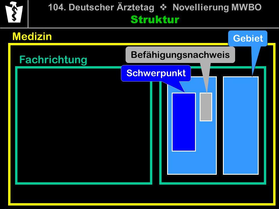 104. Deutscher Ärztetag Novellierung MWBO Struktur Medizin Fachrichtung Gebiet Befähigungsnachweis Schwerpunkt