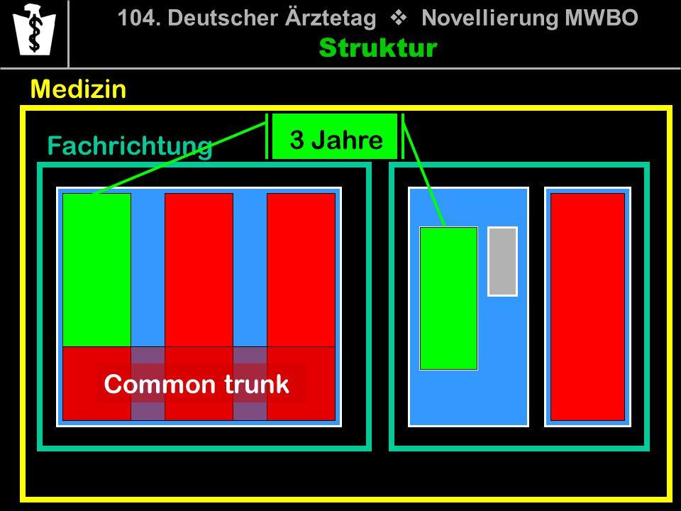 104. Deutscher Ärztetag Novellierung MWBO Struktur Medizin Fachrichtung Common trunk 3 Jahre