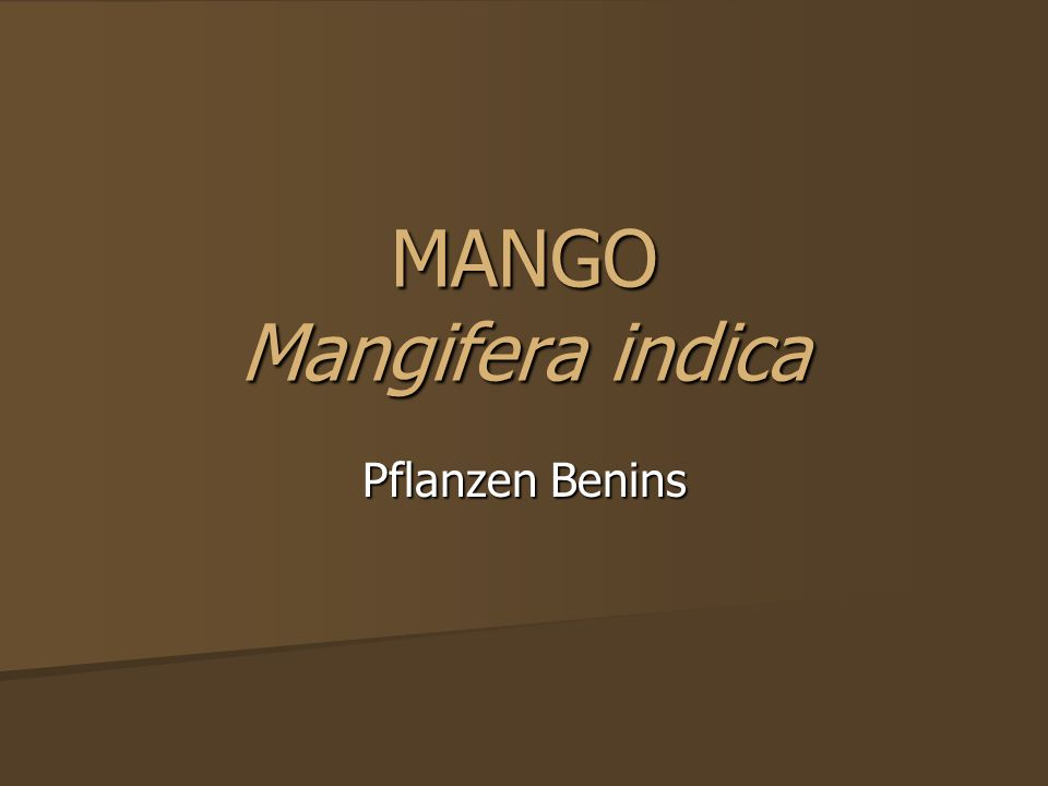Allgemeines Die Mango ist eine häufig kultivierte Art der Mangos und gehört zu den Sumachgewächsen Die Mango ist eine häufig kultivierte Art der Mangos und gehört zu den Sumachgewächsen Ordnung: Seifenbaumartige Ordnung: Seifenbaumartige Familie: Sumachgewächse Familie: Sumachgewächse Unterfamilie: Anacardioideae Unterfamilie: Anacardioideae Gattung: Mangos Gattung: Mangos Art: Mango Art: Mango http://de.wikipedia.org/wiki/Mango