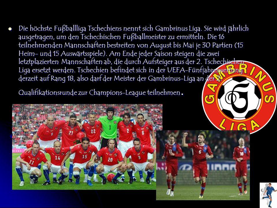 Die höchste Fußballliga Tschechiens nennt sich Gambrinus Liga. Sie wird jährlich ausgetragen, um den Tschechischen Fußballmeister zu ermitteln. Die 16