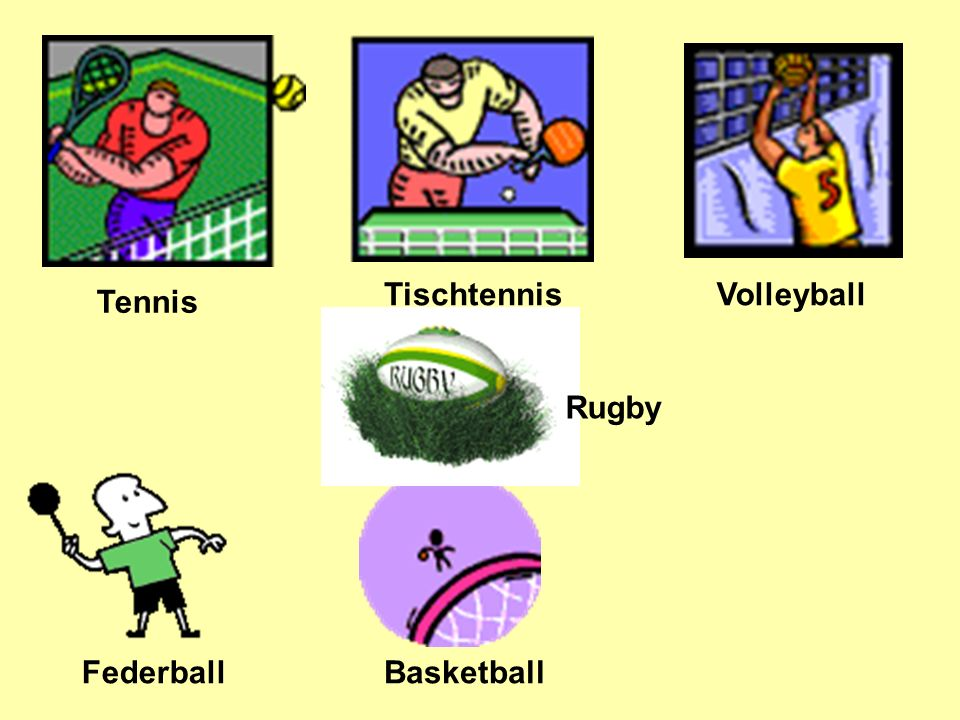 Tennis Tischtennis Volleyball Federball Basketball Rugby