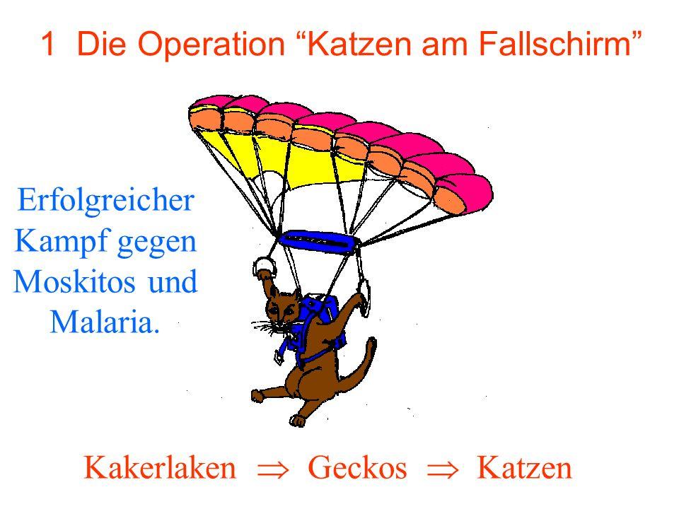 1 Die Operation Katzen am Fallschirm Erfolgreicher Kampf gegen Moskitos und Malaria. Kakerlaken Geckos Katzen