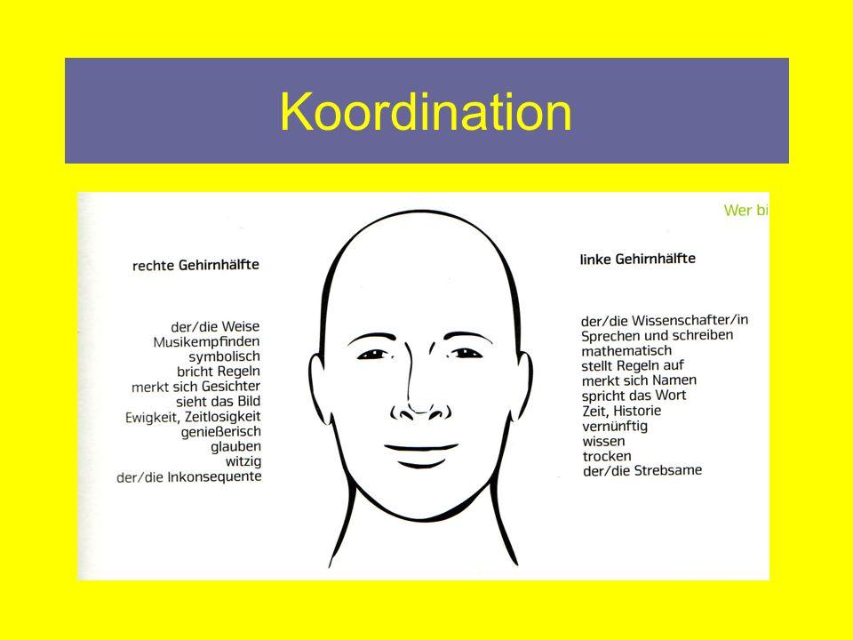 Koordination Die koordinativen Fähigkeiten bilden die Grundlage jeder menschlichen Bewegung und somit für das Erlernen, Steuern und Anpassen von Bewegungen verantwortlich.