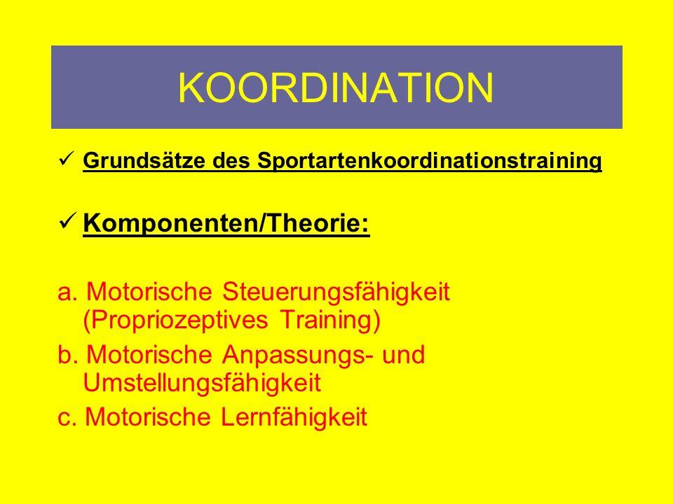 KOORDINATION Grundsätze des Sportartenkoordinationstraining: VIELSEITIGKEIT Für den Trainer und den Schüler Beide sind glücklich Ausprobieren statt Einfrieren