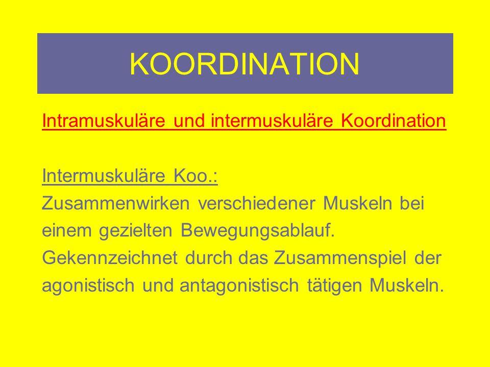 KOORDINATION Koordination – Kombination - Sportart: Vielmehr muss das Beziehungsgefüge der koordinativen Fähigkeiten bei der jeweiligen Bewegung oder Sportart gesehen werden.