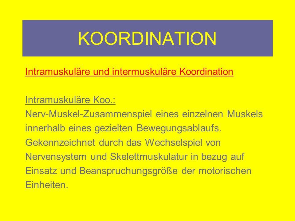 KOORDINATION Intramuskuläre und intermuskuläre Koordination Intermuskuläre Koo.: Zusammenwirken verschiedener Muskeln bei einem gezielten Bewegungsablauf.