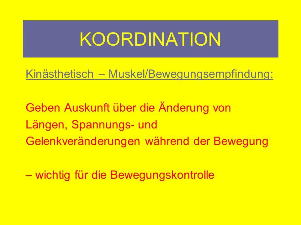 KOORDINATION Sensomotorik: Abh.