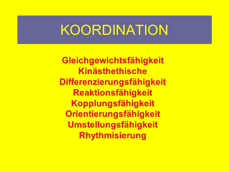 KOORDINATION Harmonische Zusammenspiel von Sinnesorganen, peripheren und zentralen Nervensystem (ZNS) sowie der Skelettmuskulatur