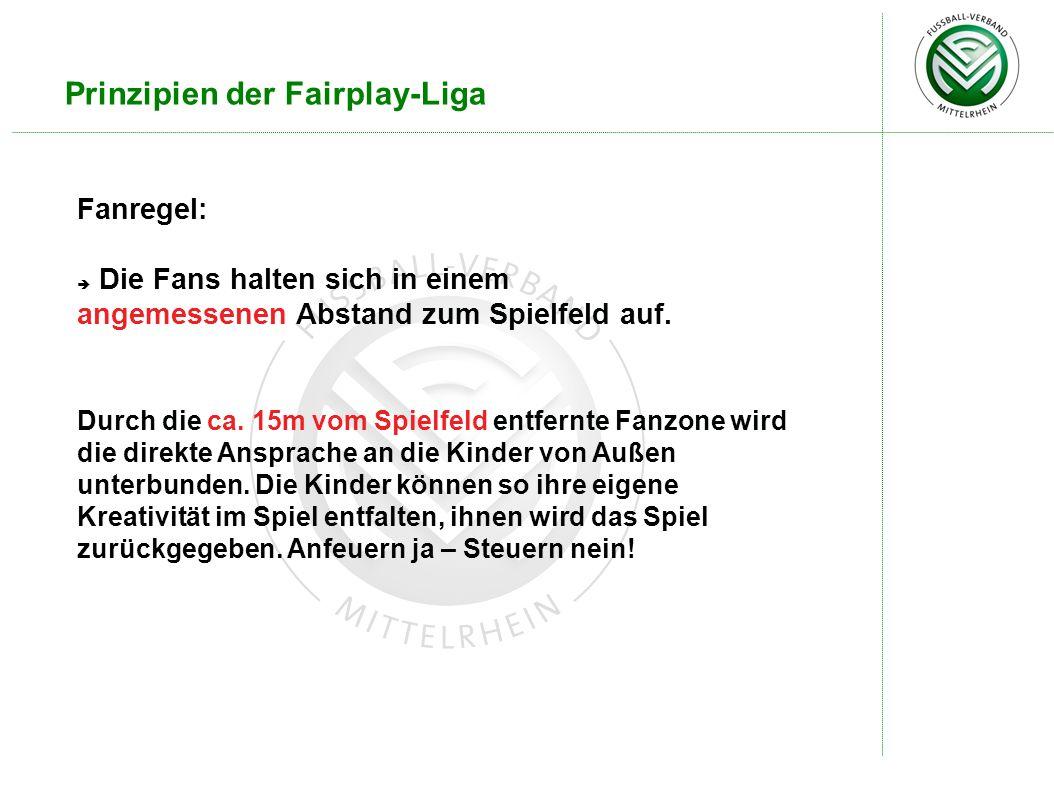 Prinzipien der Fairplay-Liga Fanregel: Die Fans halten sich in einem angemessenen Abstand zum Spielfeld auf. Durch die ca. 15m vom Spielfeld entfernte