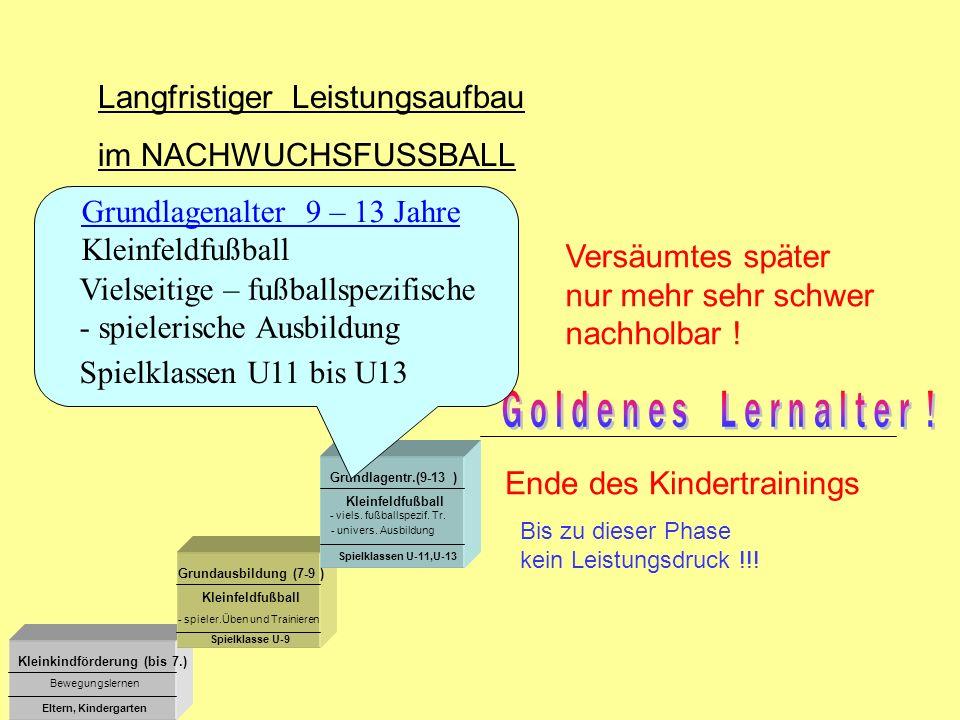 Kleinkindförderung (bis 7.) Grundausbildung (7-9 ) Grundlagentr.(9-13 ) Kleinfeldfußball - viels. fußballspezif. Tr. Bewegungslernen Eltern, Kindergar