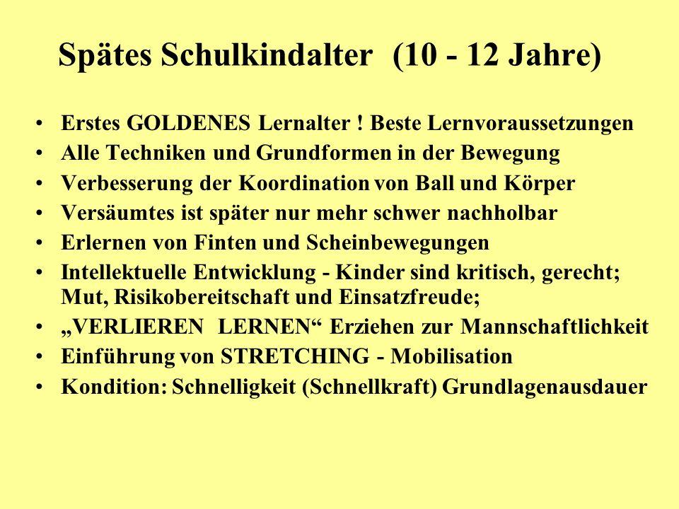 Spätes Schulkindalter (10 - 12 Jahre) Erstes GOLDENES Lernalter ! Beste Lernvoraussetzungen Alle Techniken und Grundformen in der Bewegung Verbesserun