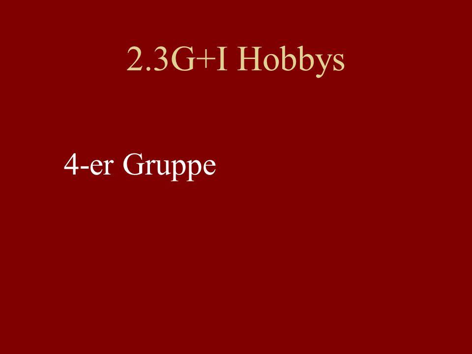 2.3G+I Hobbys 4-er Gruppe