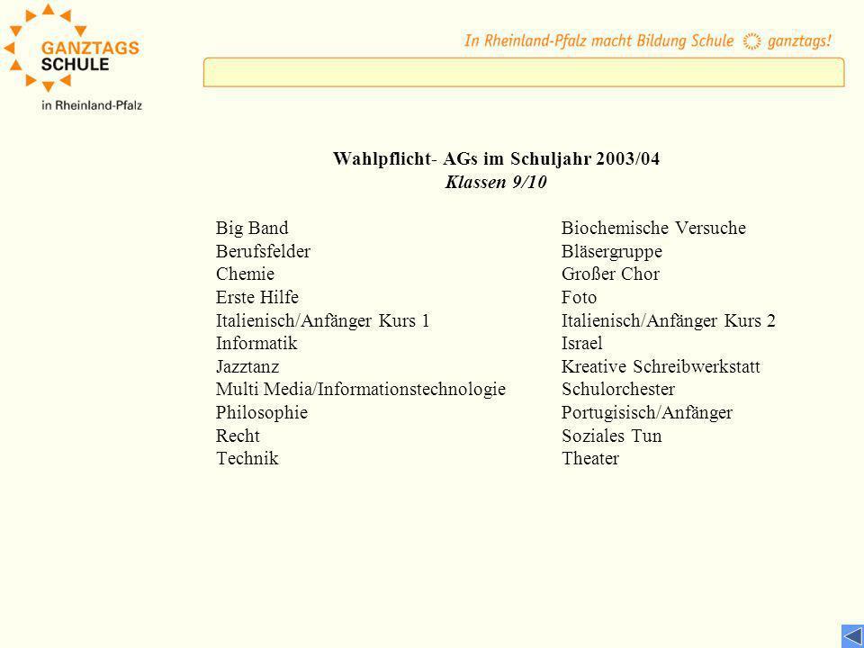 Wahlpflicht- AGs im Schuljahr 2003/04 Klassen 9/10 Big BandBiochemische Versuche BerufsfelderBläsergruppe ChemieGroßer Chor Erste HilfeFoto Italienisc