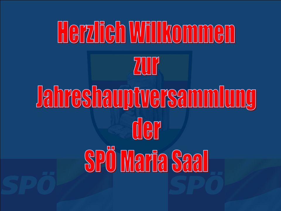 Neuwahlen (Wahlvorschlag) Parteiobmann AL Walter Zettinig Stellvertreter Ing.