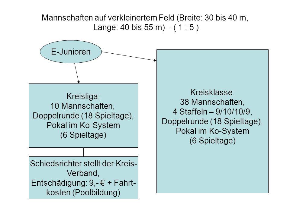 Mannschaften auf verkleinertem Feld (Breite: 30 bis 40 m, Länge: 40 bis 55 m) – ( 1 : 5 ) E-Junioren Kreisliga: 10 Mannschaften, Doppelrunde (18 Spieltage), Pokal im Ko-System (6 Spieltage) Kreisklasse: 38 Mannschaften, 4 Staffeln – 9/10/10/9, Doppelrunde (18 Spieltage), Pokal im Ko-System (6 Spieltage) Schiedsrichter stellt der Kreis- Verband, Entschädigung: 9,- + Fahrt- kosten (Poolbildung)