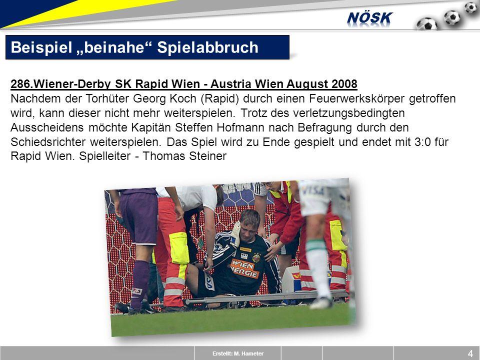 Erstellt: M. Hameter 4 Beispiel beinahe Spielabbruch 286.Wiener-Derby SK Rapid Wien - Austria Wien August 2008 Nachdem der Torhüter Georg Koch (Rapid)