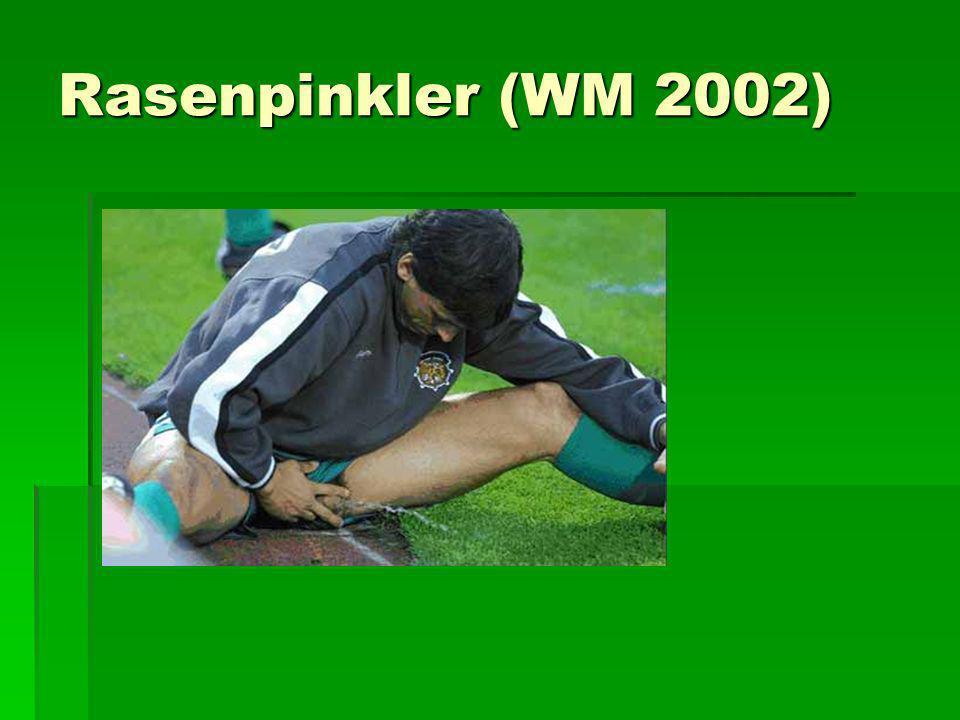 Rasenpinkler (WM 2002)