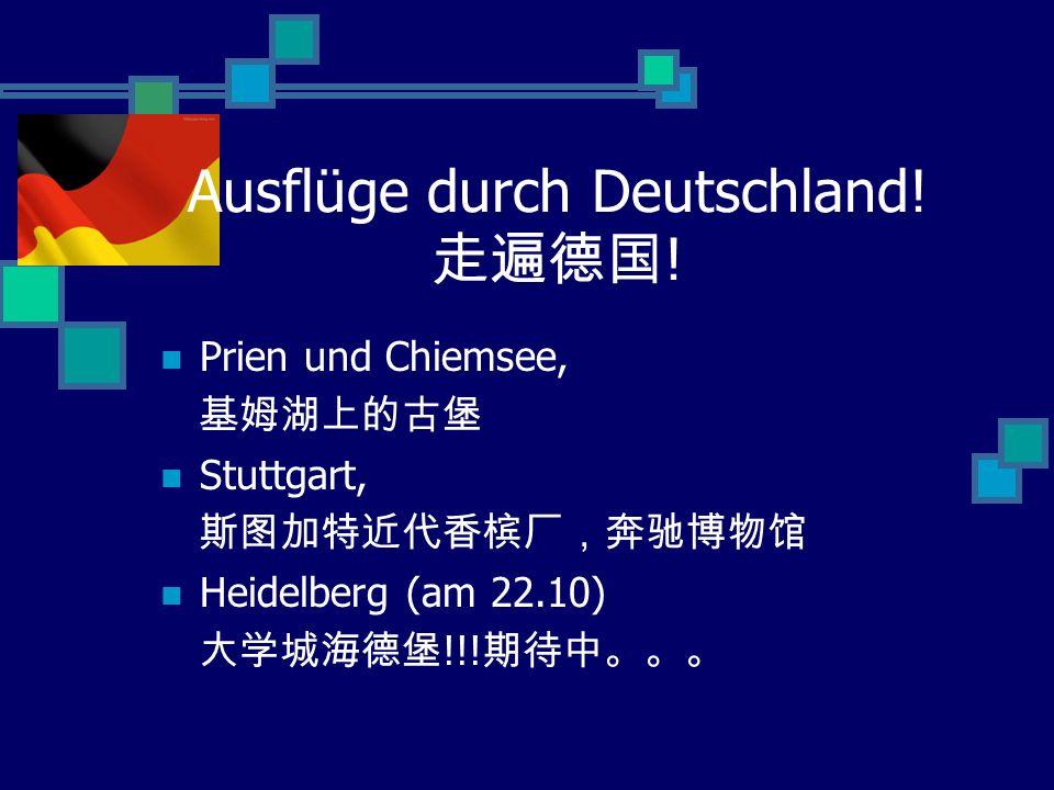 Ausflüge durch Deutschland! ! Prien und Chiemsee, Stuttgart, Heidelberg (am 22.10) !!!