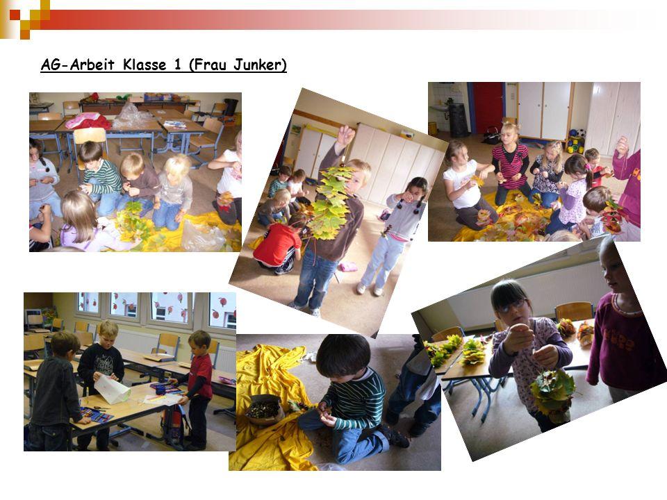 AG-Arbeit Klasse 1 (Frau Junker)