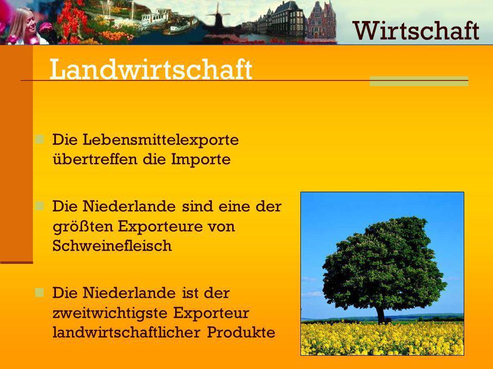 Landwirtschaft Die Lebensmittelexporte übertreffen die Importe Die Niederlande sind eine der größten Exporteure von Schweinefleisch Die Niederlande is
