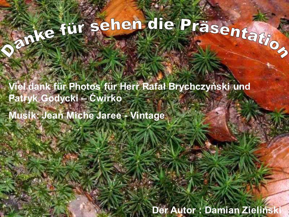Viel dank für Photos für Herr Rafał Brychczyński und Patryk Godycki – Ćwirko Musik: Jean Miche Jaree - Vintage Der Autor : Damian Zieliński