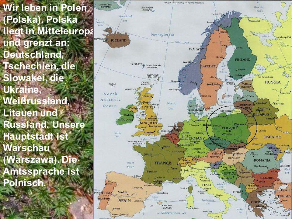 Wir leben in Polen (Polska). Polska liegt in Mitteleuropa und grenzt an: Deutschland, Tschechien, die Slowakei, die Ukraine, Weißrussland, Litauen und