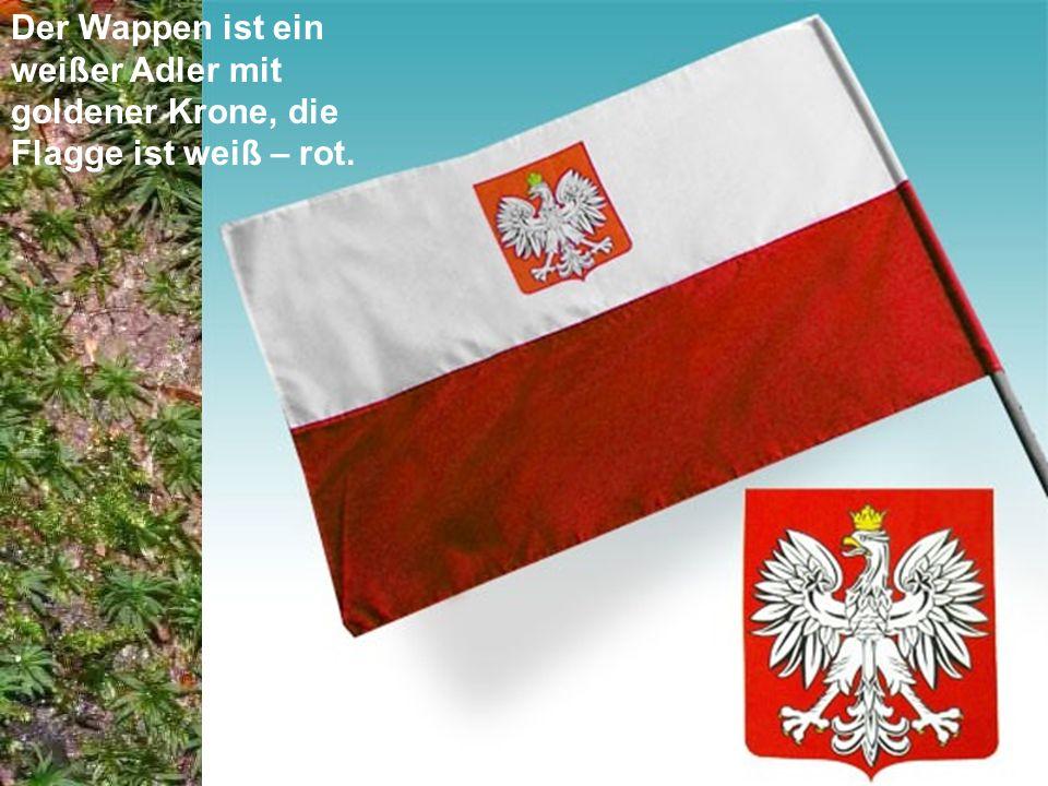 Der Wappen ist ein weißer Adler mit goldener Krone, die Flagge ist weiß – rot.
