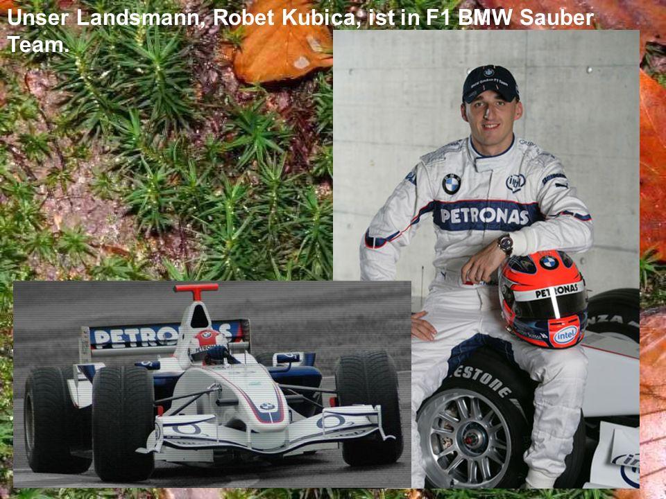 Unser Landsmann, Robet Kubica, ist in F1 BMW Sauber Team.