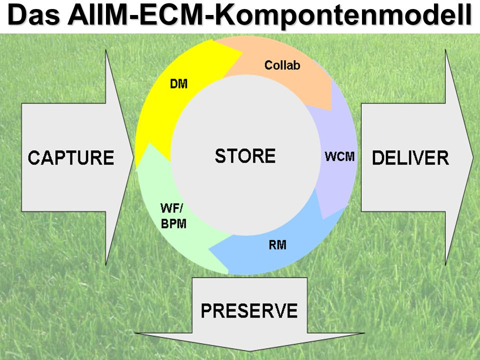 10 d.forum Trainerbriefing: die ECM Liga Dr. Ulrich Kampffmeyer PROJECT CONSULT Unternehmensberatung Dr. Ulrich Kampffmeyer GmbH Breitenfelder Straße