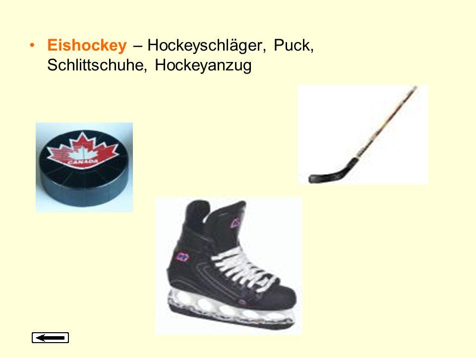 Eishockey – Hockeyschläger, Puck, Schlittschuhe, Hockeyanzug