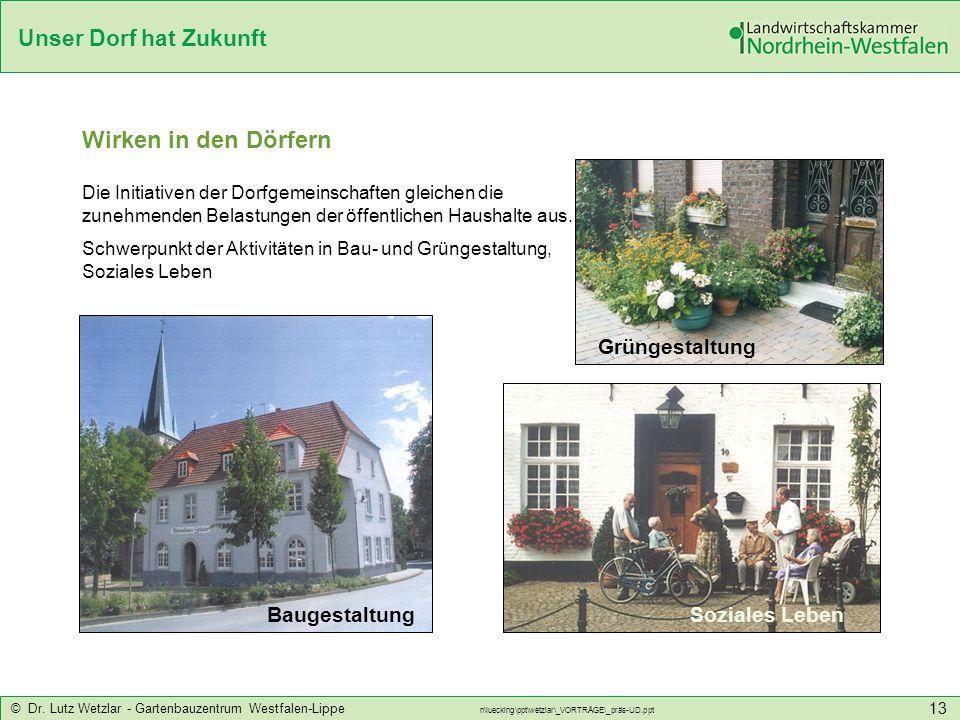 Unser Dorf hat Zukunft © Dr. Lutz Wetzlar - Gartenbauzentrum Westfalen-Lippe n\luecking\ppt\wetzlar\_VORTRÄGE\_präs-UD.ppt 13 Die Initiativen der Dorf