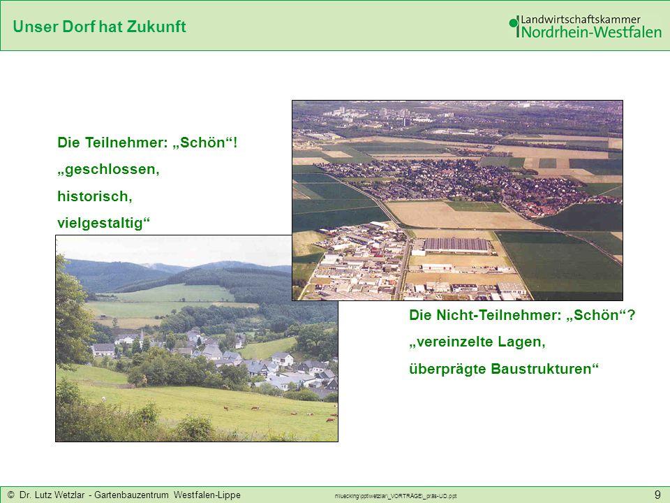 Unser Dorf hat Zukunft © Dr. Lutz Wetzlar - Gartenbauzentrum Westfalen-Lippe n\luecking\ppt\wetzlar\_VORTRÄGE\_präs-UD.ppt 9 Die Teilnehmer: Schön! ge