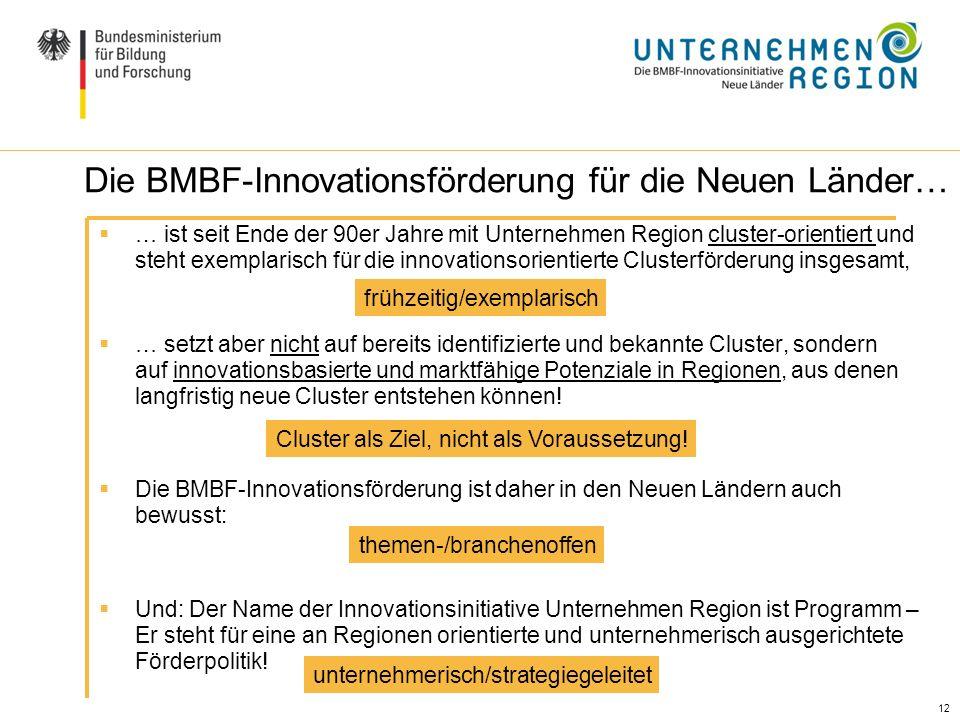 12 Die BMBF-Innovationsförderung für die Neuen Länder… … ist seit Ende der 90er Jahre mit Unternehmen Region cluster-orientiert und steht exemplarisch