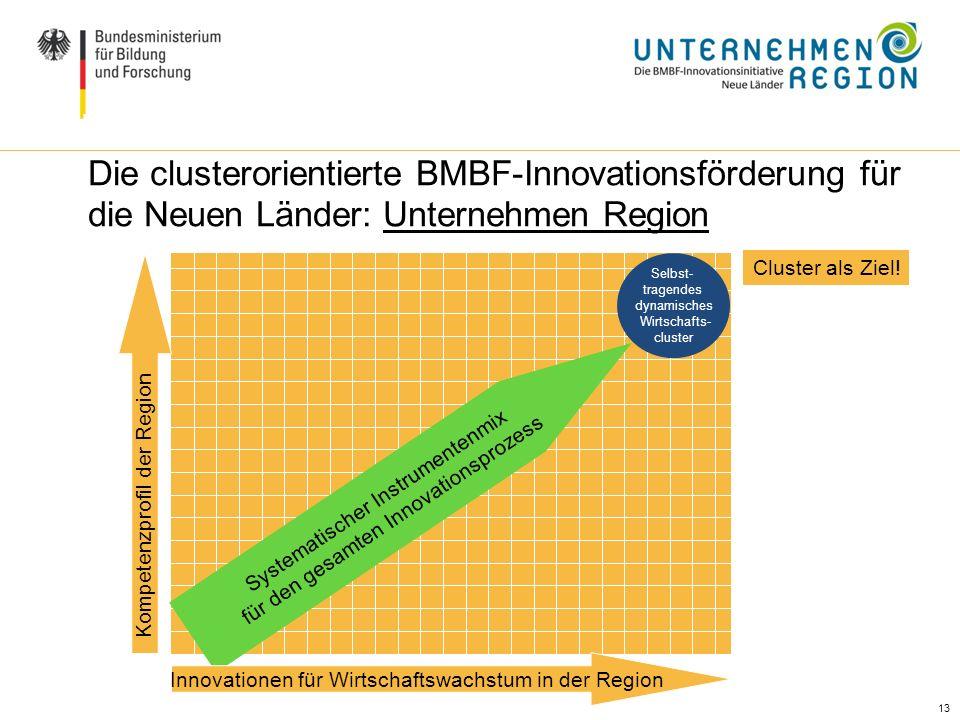 13 Ausgangslage / Handlungsbedarf (II) Die clusterorientierte BMBF-Innovationsförderung für die Neuen Länder: Unternehmen Region Systematischer Instru