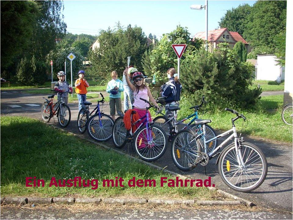 Ein Ausflug mit dem Fahrrad.