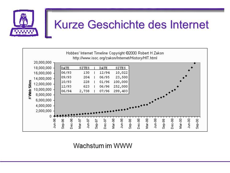 Kurze Geschichte des Internet Wachstum im WWW