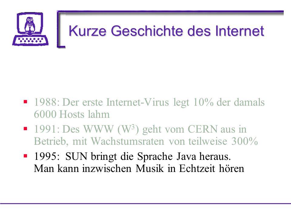 Kurze Geschichte des Internet 1988: Der erste Internet-Virus legt 10% der damals 6000 Hosts lahm 1991: Des WWW (W 3 ) geht vom CERN aus in Betrieb, mit Wachstumsraten von teilweise 300% 1995: SUN bringt die Sprache Java heraus.