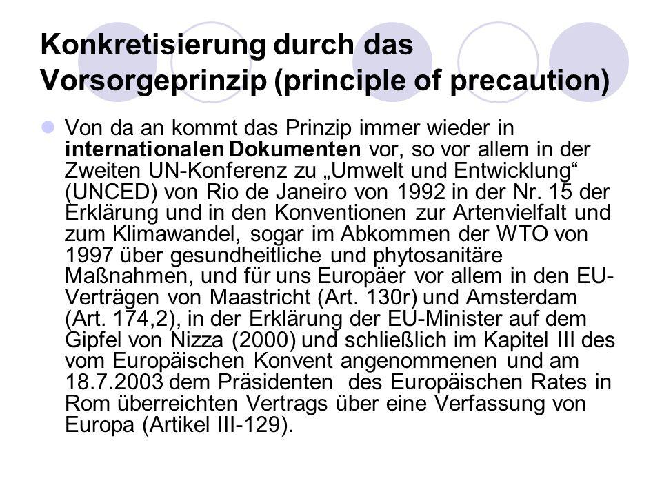 Konkretisierung durch das Vorsorgeprinzip (principle of precaution) Von da an kommt das Prinzip immer wieder in internationalen Dokumenten vor, so vor