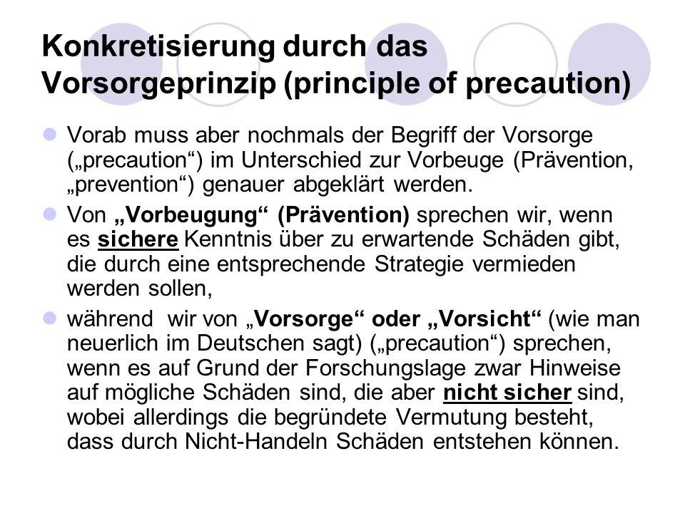 Konkretisierung durch das Vorsorgeprinzip (principle of precaution) Vorab muss aber nochmals der Begriff der Vorsorge (precaution) im Unterschied zur