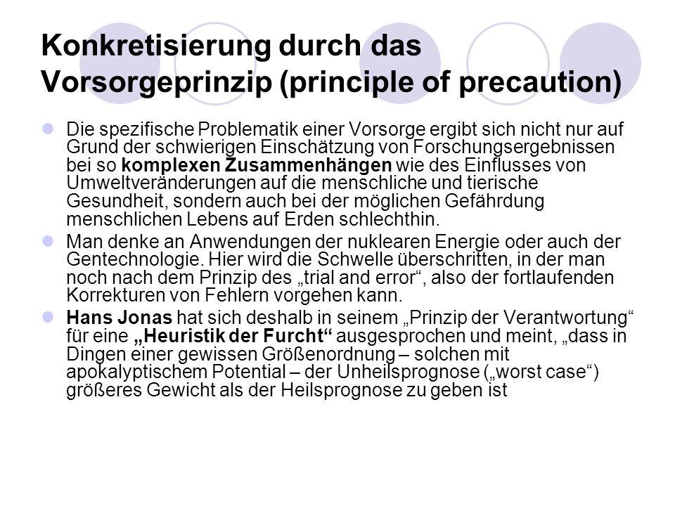 Konkretisierung durch das Vorsorgeprinzip (principle of precaution) Die spezifische Problematik einer Vorsorge ergibt sich nicht nur auf Grund der sch