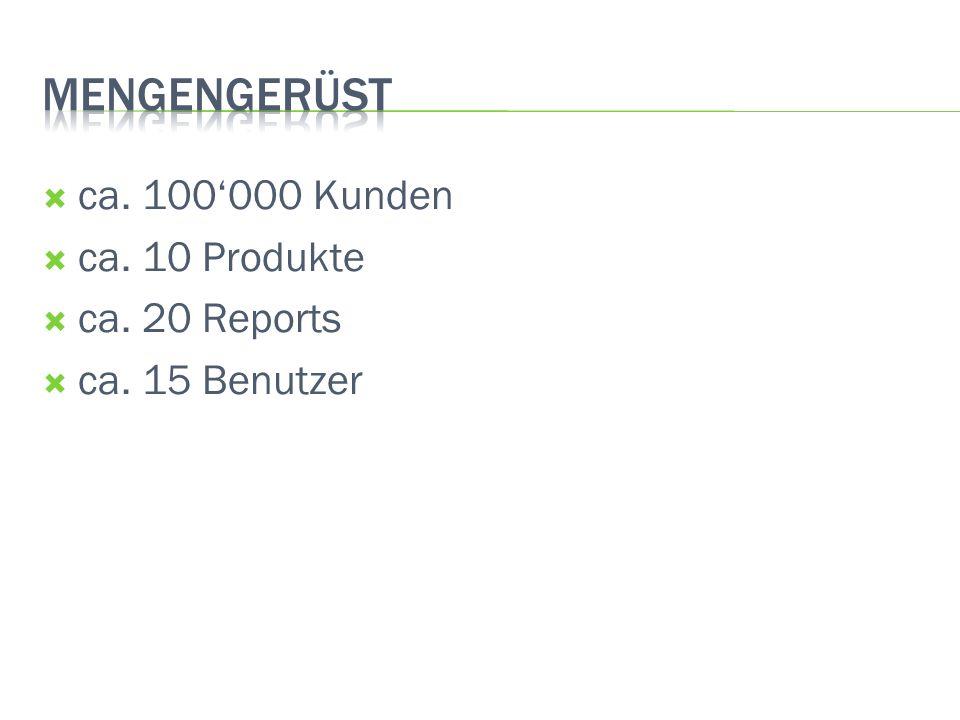 ca. 100000 Kunden ca. 10 Produkte ca. 20 Reports ca. 15 Benutzer