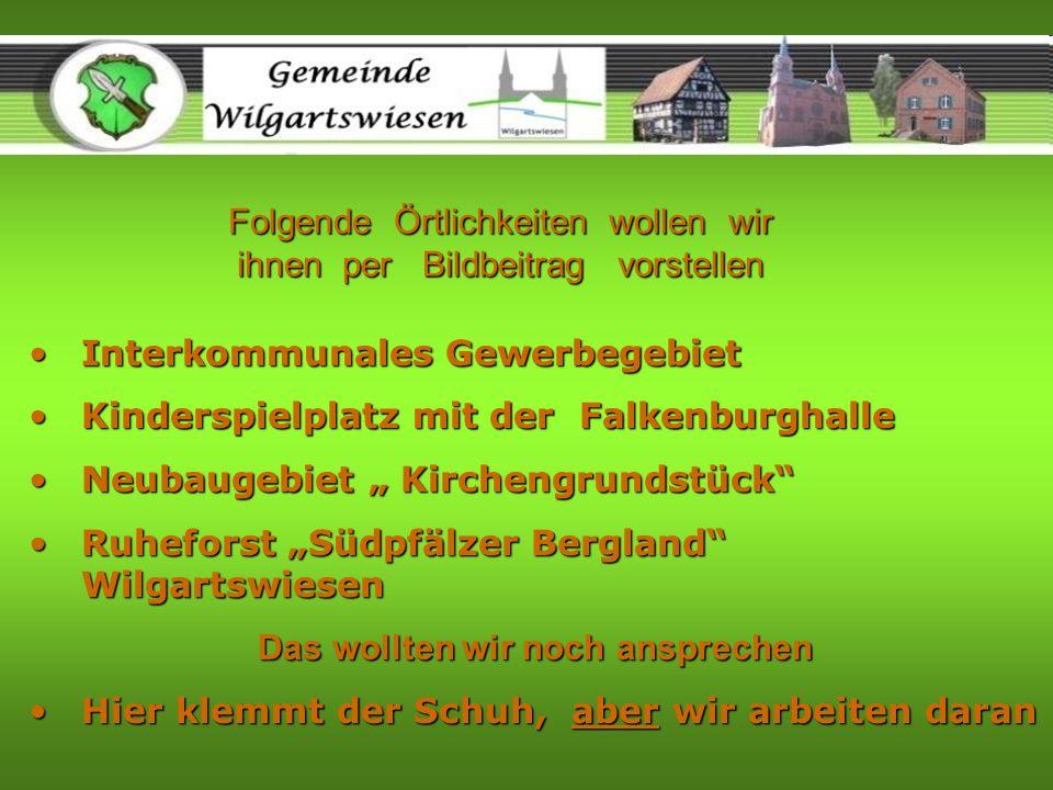 Interkommunales Gewerbegebiet Wilgartswiesen - Hauenstein Direkt an der B10 zwischen Hauenstein & Wilgartswiesen soll das neue Gewerbegebiet entstehen.Direkt an der B10 zwischen Hauenstein & Wilgartswiesen soll das neue Gewerbegebiet entstehen.