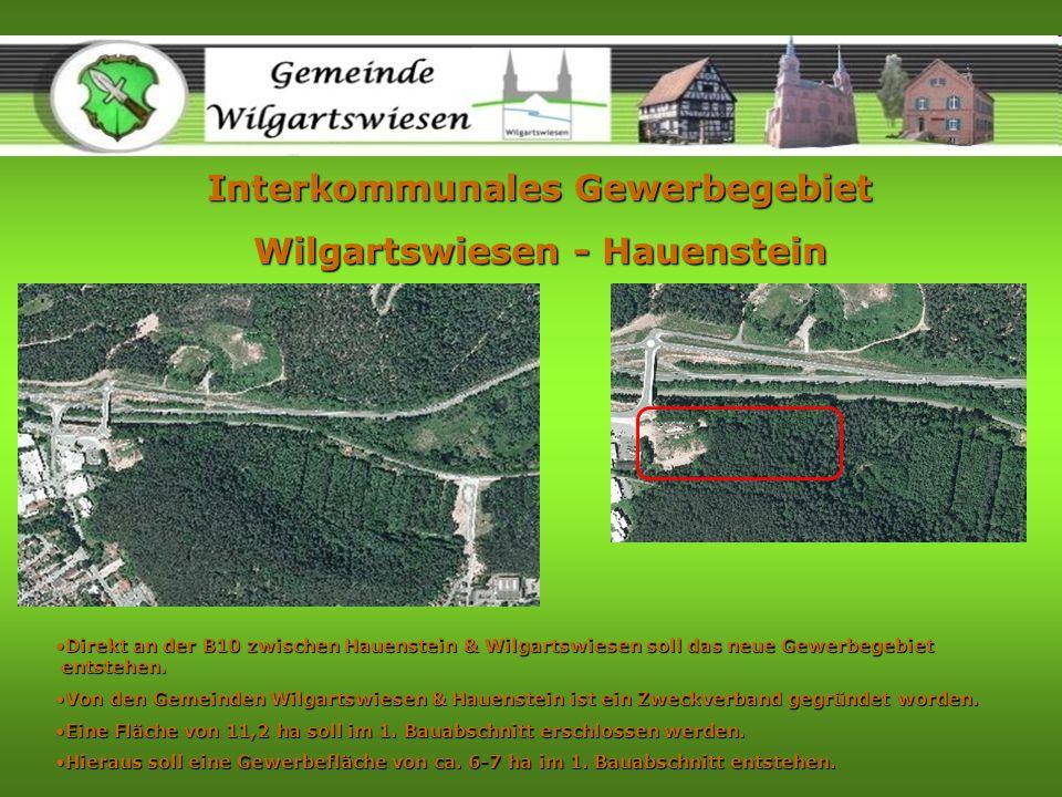 Interkommunales Gewerbegebiet Wilgartswiesen - Hauenstein Direkt an der B10 zwischen Hauenstein & Wilgartswiesen soll das neue Gewerbegebiet entstehen