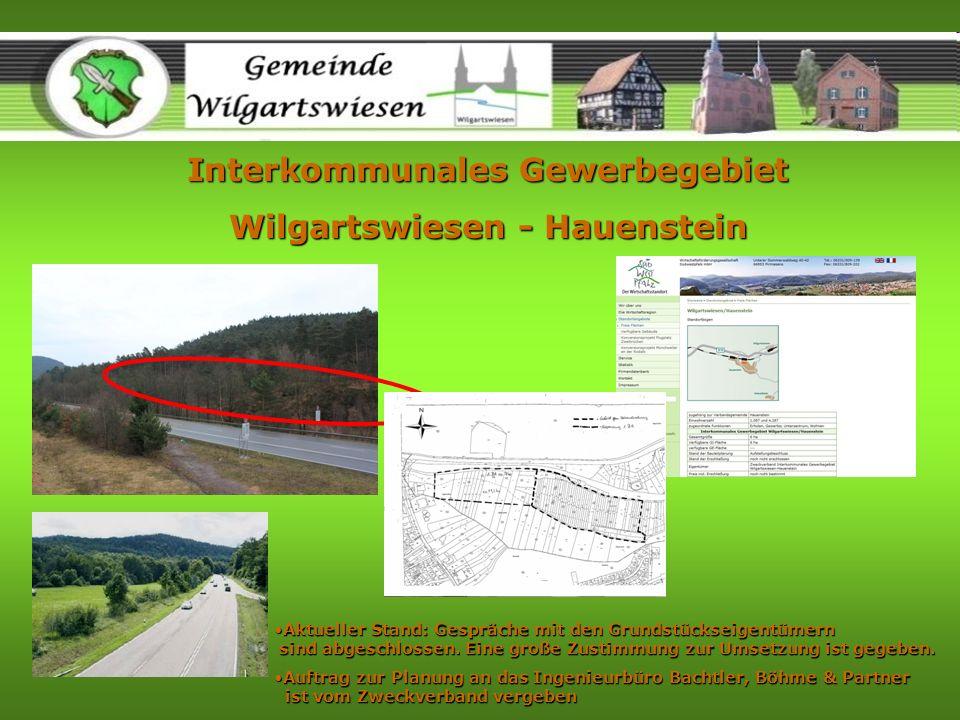 Interkommunales Gewerbegebiet Wilgartswiesen - Hauenstein Aktueller Stand: Gespräche mit den Grundstückseigentümern sind abgeschlossen. Eine große Zus