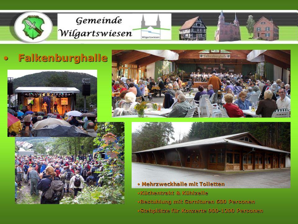 FalkenburghalleFalkenburghalle Mehrzweckhalle mit Toiletten Mehrzweckhalle mit Toiletten Küchentrakt & KühlzelleKüchentrakt & Kühlzelle Bestuhlung mit