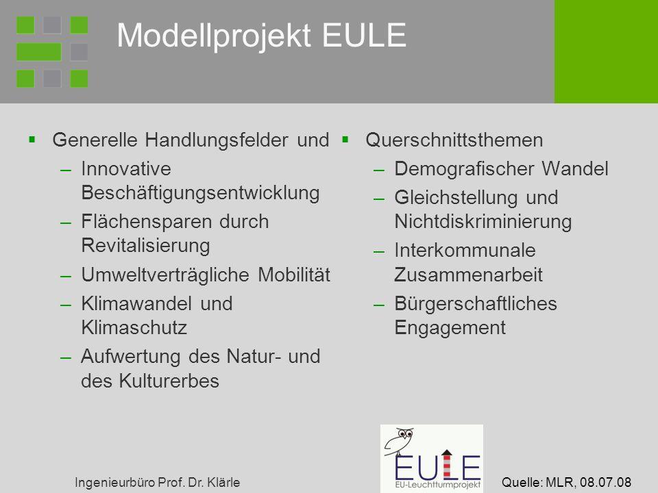 Ingenieurbüro Prof. Dr. Klärle Modellprojekt EULE Generelle Handlungsfelder und –Innovative Beschäftigungsentwicklung –Flächensparen durch Revitalisie