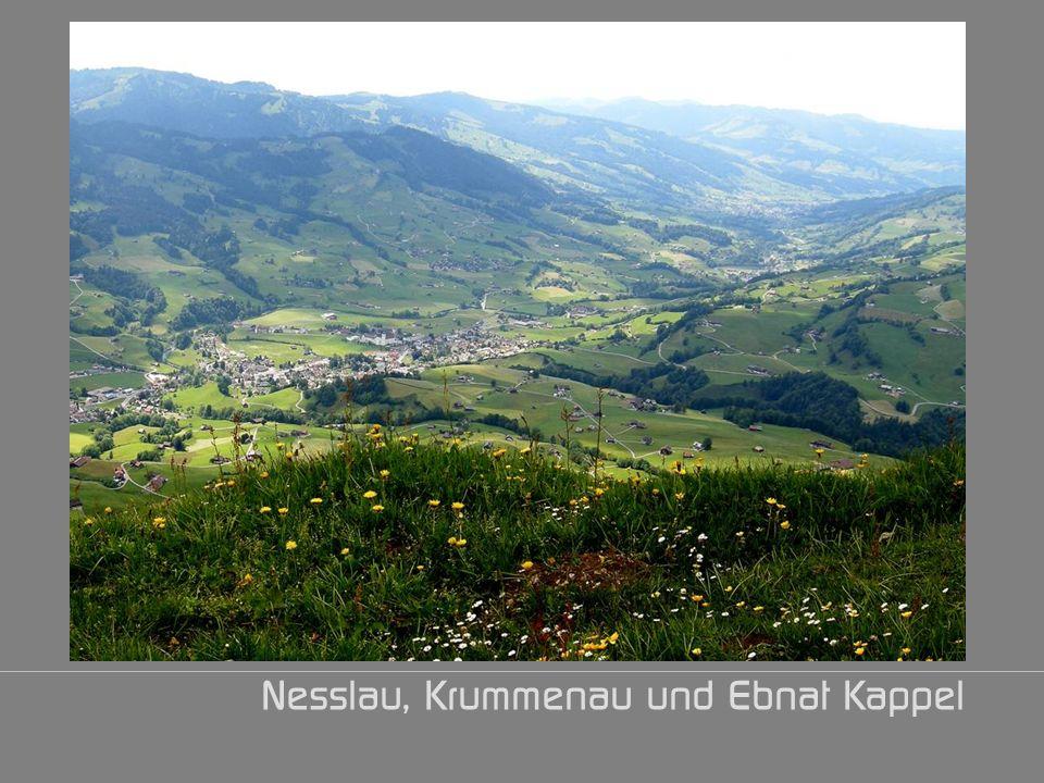 Nesslau, Krummenau und Ebnat Kappel