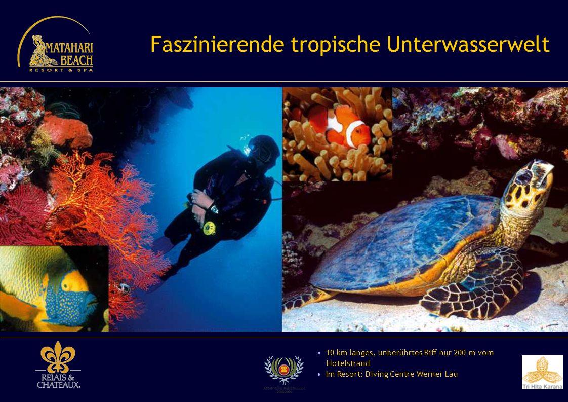 Faszinierende tropische Unterwasserwelt 10 km langes, unberührtes Riff nur 200 m vom Hotelstrand Im Resort: Diving Centre Werner Lau
